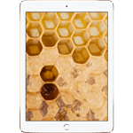 iPad® Air 2 128GB - Gold (Refurbished by EB Games)